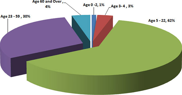 Chart: Clients' Age Groups by age range