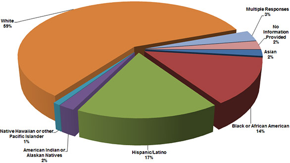 Pie chart of clients by Racial/Ethnic Background